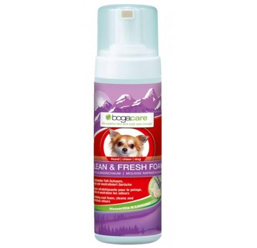 Bogacare® Clean & Fresh Foam - Schiuma a secco per cani 150 ml