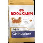 BHN Chihuahua 1.5kg