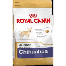 BHN Chihuahua Junior 1.5kg