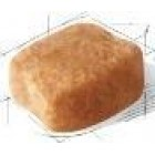 BHN Dachshund 7.5kg