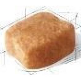 BHN Dachshund 1.5kg