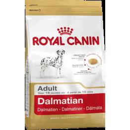 BHN Dalmatien 12kg