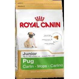 BHN Pug Junior 1.5kg