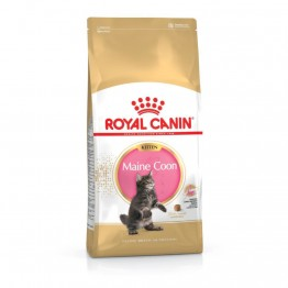 Royal Canin FBN  Kitten Maine Coon 4kg