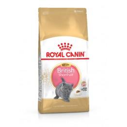 Royal Canin FBN  Kitten Brit.Shorthair 2kg