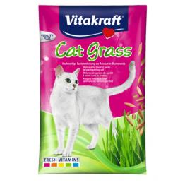 Cat-Gras Samen zu 24031 40g