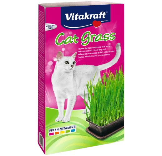 Cat-Gras Schale Katze 120g