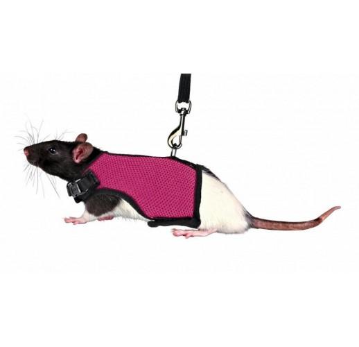 Pettorina morbida con guinzaglio estendibile per ratti