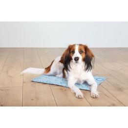 Cooling mat, L: 65 × 50 cm, light blue