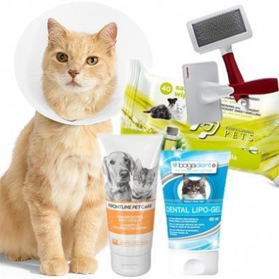 GROOMING SUPPLIES AND CARE