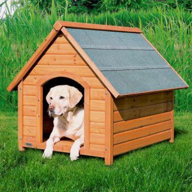DOG HOUSES, GATES, DOORS