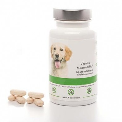 DOG FOOD SUPPLEMENTS